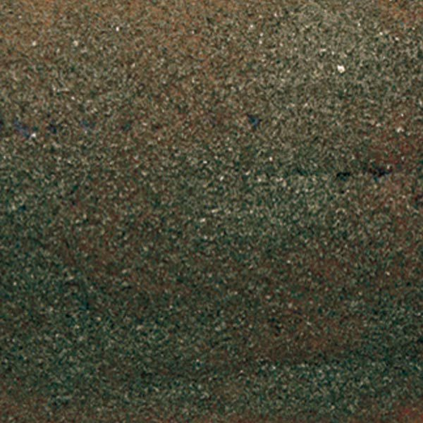 Penca de salmón ahumado con alga nori